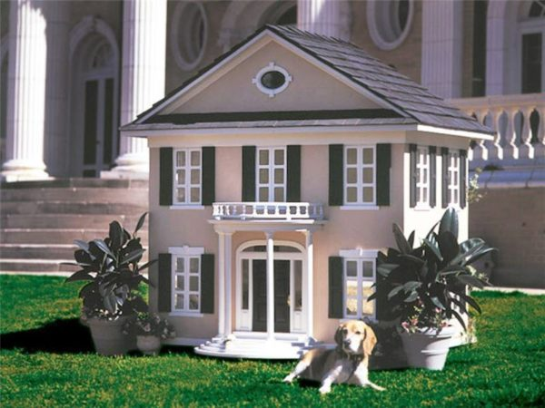 A doggie mansion for a spoiled dog